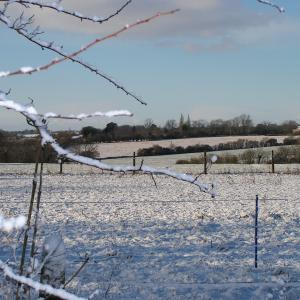 Clopton fields in snow